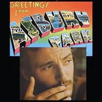 Bruce Springsteen 1973 Albums